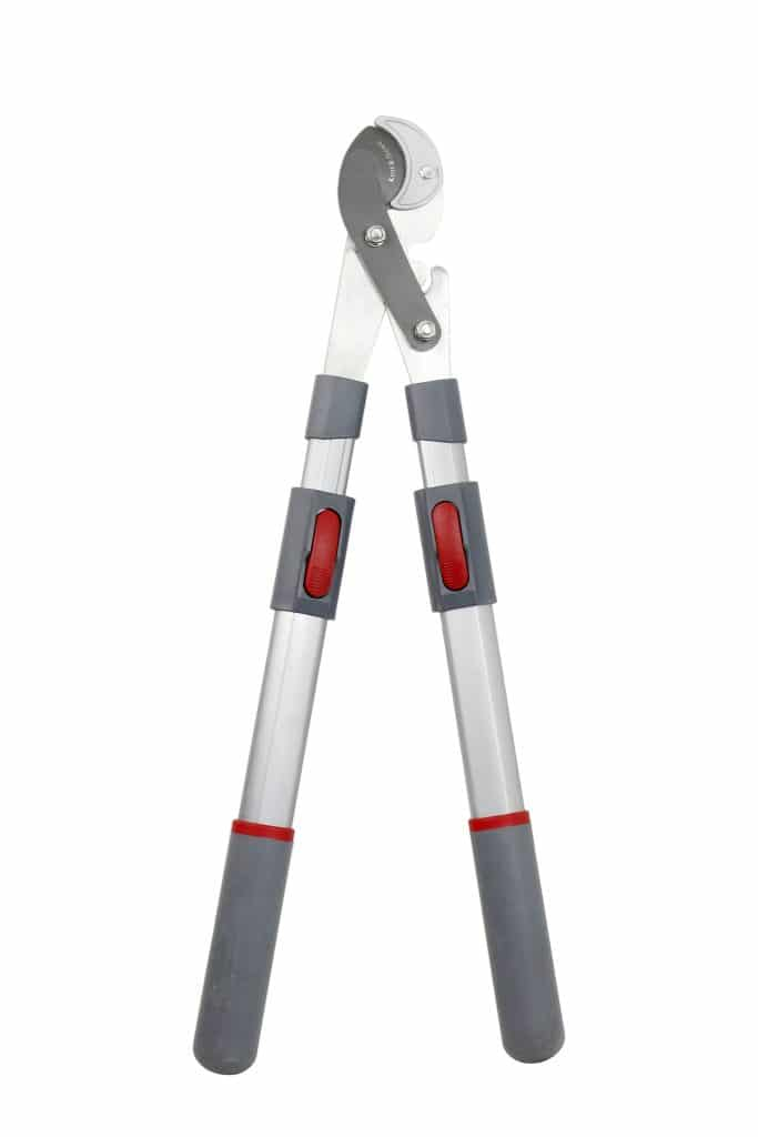 Kent and Stowe Telescopic Geared Anvil Loppers