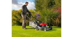 Honda HRH536 QX 53cm Single Speed Rear Roller Lawn Mower